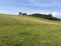 Colina de la hierba verde en un día de veranos Fotos de archivo libres de regalías