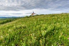 Colina de la meseta tibetana con las flores Imágenes de archivo libres de regalías