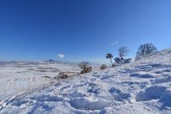 colina de la nieve del invierno Fotografía de archivo