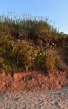 Colina de la playa encendida por el sol poniente Fotografía de archivo