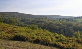 Colina de Rowbarrows y de Dunkery Foto de archivo