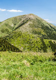 Colina de Stoh en las montañas de Mala Fatra en Eslovaquia Fotografía de archivo