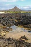 Colina del dragón, parque de la isla de Santa Cruz, las Islas Gal3apagos Imágenes de archivo libres de regalías
