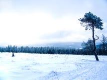 Colina del invierno con nieve en Winterberg foto de archivo