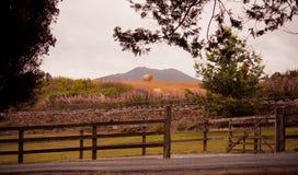 Colina del país con la cerca y las balas de madera de heno imágenes de archivo libres de regalías