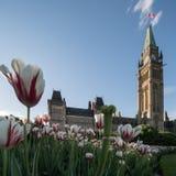 Colina del parlamento de Ottawa, Canadá Foto de archivo