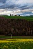 Colina en la Toscana Fotografía de archivo