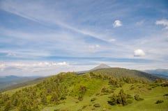 Colina enselvada verde en los Cárpatos magníficos Fotografía de archivo libre de regalías