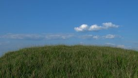 Colina herbosa con el fondo del cielo azul Fotografía de archivo