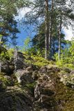 Colina rocosa con los árboles del otoño Fotos de archivo