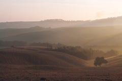 Colina toscana típica en la salida del sol Fotos de archivo
