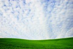 Colina verde Foto de archivo libre de regalías