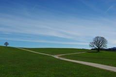 Colina verde cerca de Steingaden, Alemania Foto de archivo