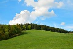 Colina verde del campo y del bosque Imágenes de archivo libres de regalías
