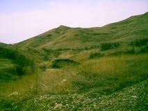 Colina verde del paisaje de la piedra amarilla del registro Fotografía de archivo libre de regalías