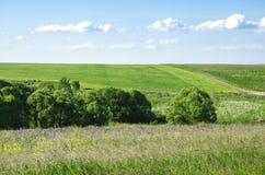 Colina verde en Rusia Fotos de archivo libres de regalías