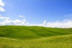 Colina verde en Val Orcia Imagen de archivo libre de regalías