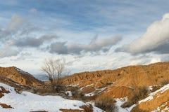 Colinas anaranjadas en la nieve Imagen de archivo