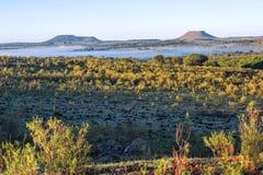 Colinas de Cuchilla del Ombu en Tacuarembo, Uruguay Fotografía de archivo