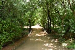 Colinas de Horsley, Andhra Pradesh, la India Foto de archivo libre de regalías