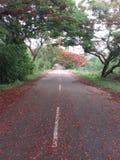 Colinas de Horsley, Andhra Pradesh, la India Foto de archivo