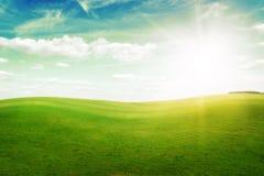 Colinas de la hierba verde bajo el sol del mediodía en cielo azul. Fotografía de archivo libre de regalías