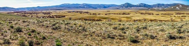 Colinas de las montañas rocosas de Colorado Imagen de archivo libre de regalías