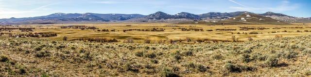 Colinas de las montañas de Colorado Imagenes de archivo
