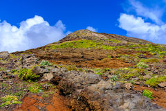 Colinas de Madeira Fotografía de archivo