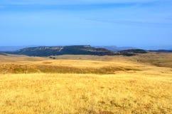 Colinas de oro de la hierba en la meseta de Lagonacky Foto de archivo