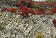 Colinas del Cáucaso Imagen de archivo libre de regalías