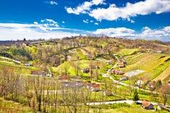 Colinas del viñedo del verde de la región de Zagorje Fotos de archivo