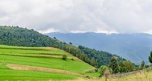Colinas en el camino de Transalpina, montañas de la hierba verde de Parang fotos de archivo libres de regalías