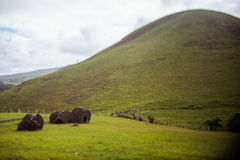 Colinas en Isla de Pascua Rapa Nui Semana Santa Fotografía de archivo libre de regalías