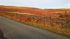 Colinas herbosas en el parque nacional del distrito máximo en Inglaterra almacen de metraje de vídeo