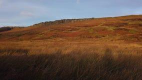 Colinas herbosas en el parque nacional del distrito máximo en Inglaterra almacen de video