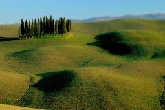 Colinas toscanas del ciprés del paisaje de Siena Foto de archivo libre de regalías