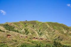 Colinas verdes Foto de archivo libre de regalías