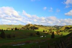 Colinas verdes con el río en Nueva Zelanda Foto de archivo libre de regalías