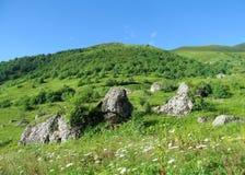 Colinas verdes con la hierba, el bosque y las rocas Foto de archivo libre de regalías