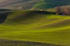 Colinas verdes de Moravia Imagen de archivo libre de regalías