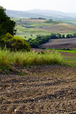 Colinas verdes de Toscana Foto de archivo