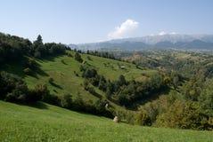 Colinas verdes en Transilvania Fotografía de archivo libre de regalías