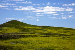 Colinas verdes rodantes en Custer State Park en Dakota del Sur imagenes de archivo