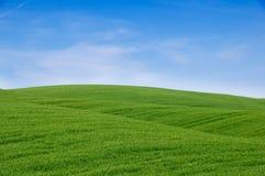 Colinas verdes y cielo azul Imagenes de archivo