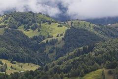 Colinas y cloudscape boscosos Foto de archivo