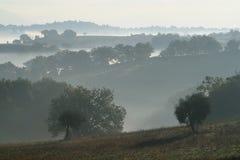 Colinas y niebla imagenes de archivo