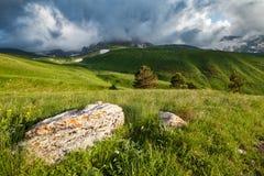 Colinas y prados alpinos Imagenes de archivo