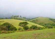 Colinas y prados - Misty Hills y cielo nublado, Idukki, Kerala, la India de Vagamon Imágenes de archivo libres de regalías