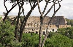 Colisé (Rome Italie) Photographie stock